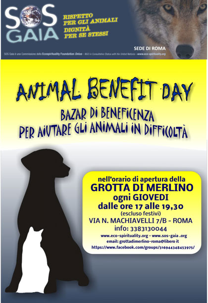 Animal Benfet Day Roma