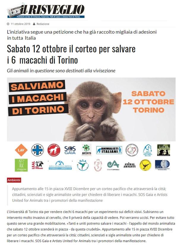 Il-Risveglio-12-10-2019-manifestazione-macachi-torino