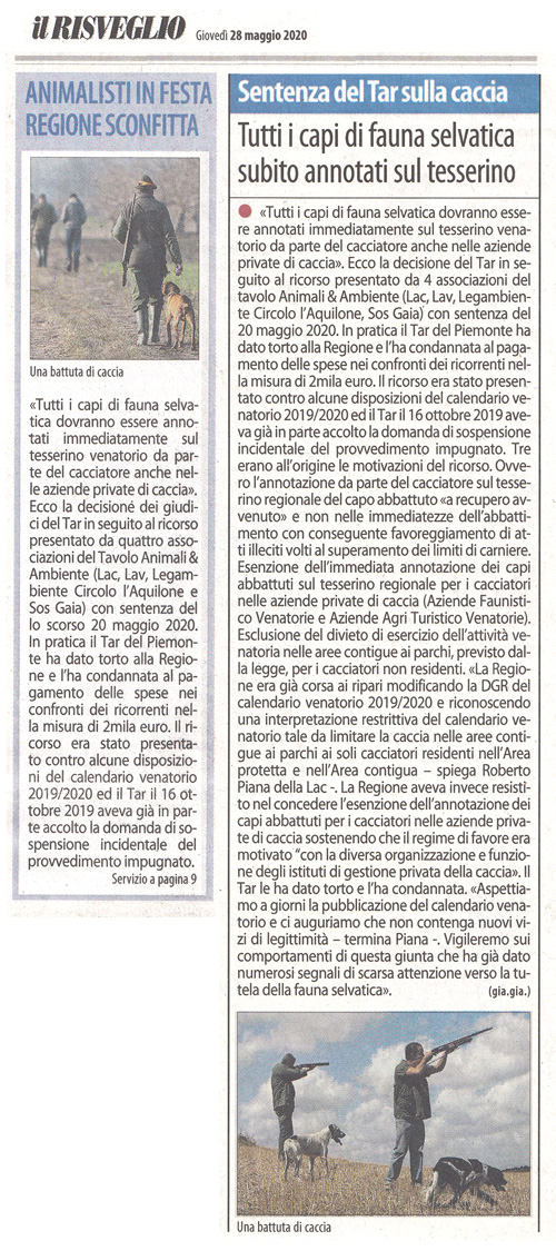 il-risveglio-28-05-2020-Sentenza-TAR-Caccia-Regione-Piemonte