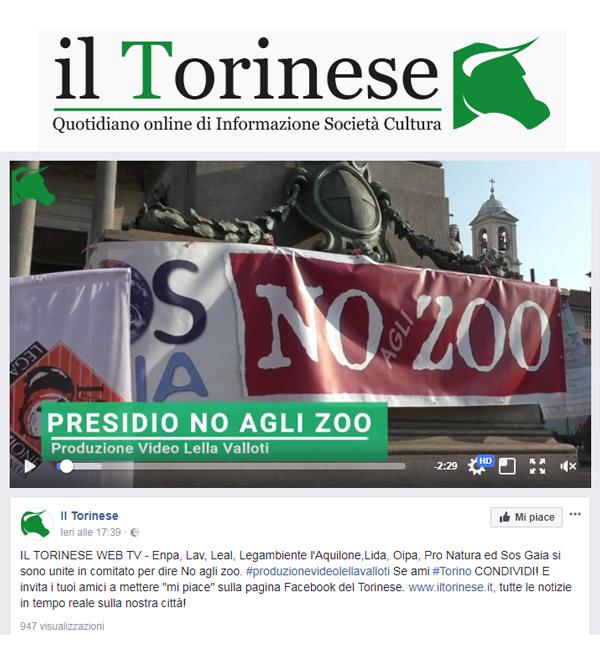 Il Torinese - 15 ottobre 2017 - Presidio NO AGLI ZOO, 14 ottobre 2017, Torino