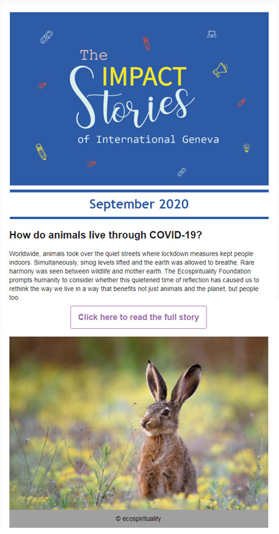 impact-stories-of-international-geneva-september-2020-animals-covid-19
